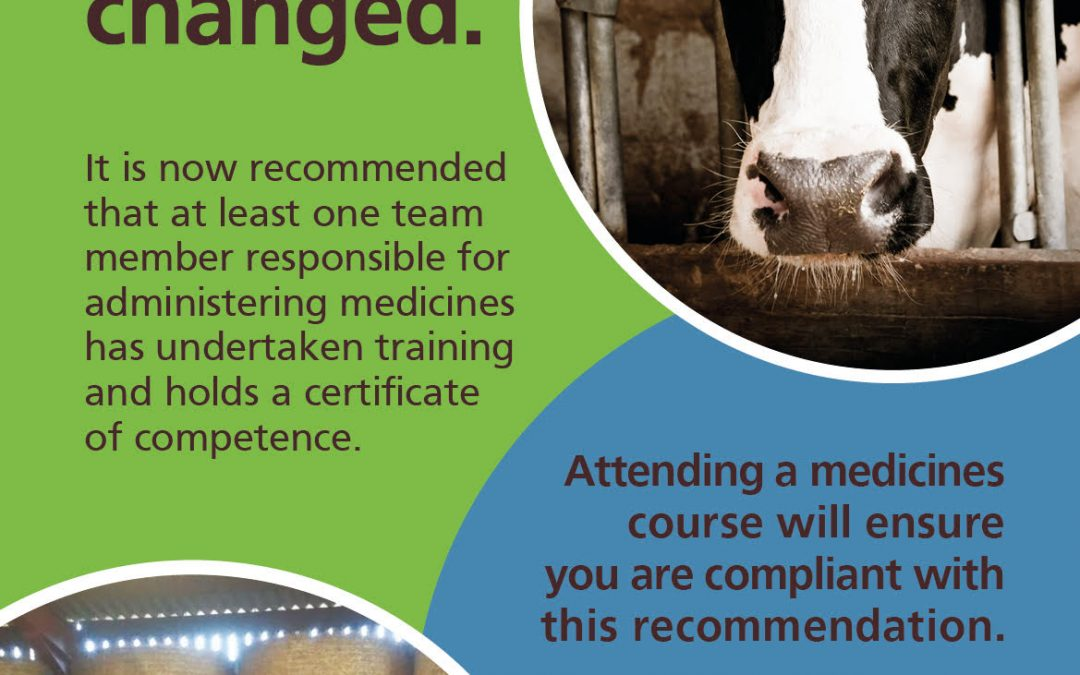 Mastering Medicines Course: an update